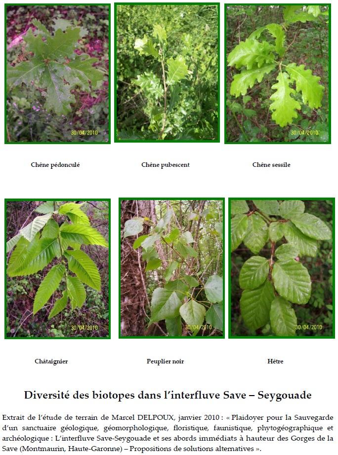 Diversité des biotopes